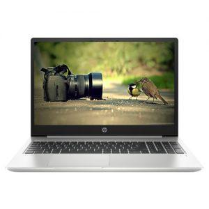 HP Probook 455 G7 (Ryzen 7)